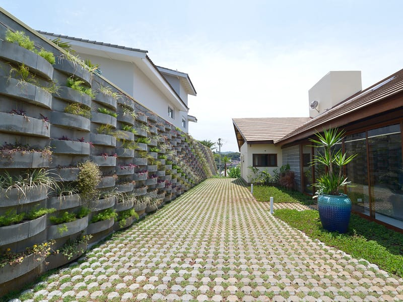 fotos jardim vertical : fotos jardim vertical:Os Blocos para Jardim Vertical permite diversas maneiras de