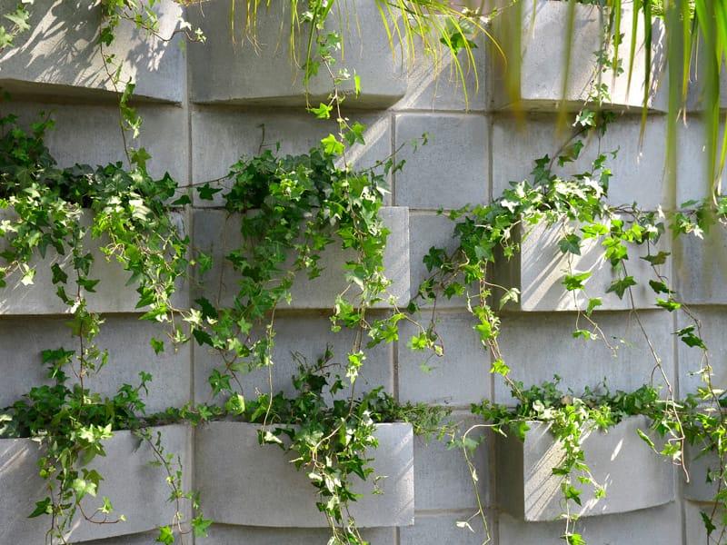 fotos jardim vertical : fotos jardim vertical:Bloco para Jardim Vertical Foto 05